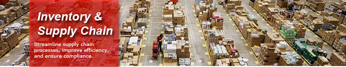 Inventory and Supply Chain Solutions